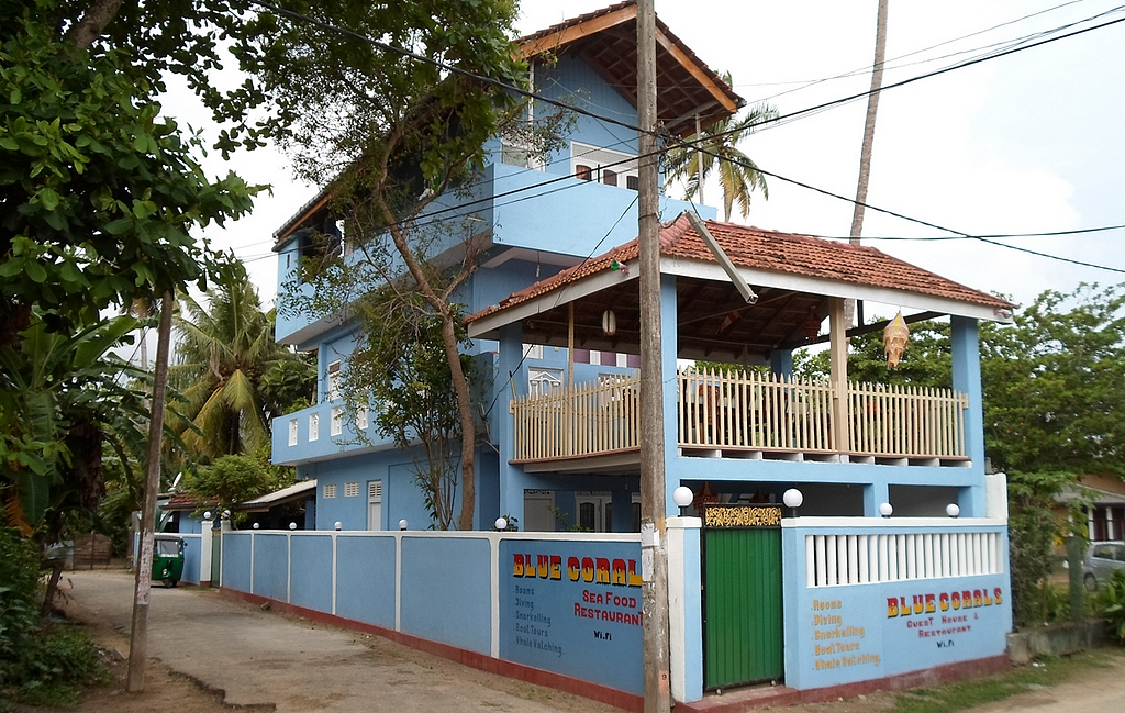 Blue Coral Guesthouse Polhena
