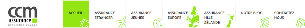 ccm assurance