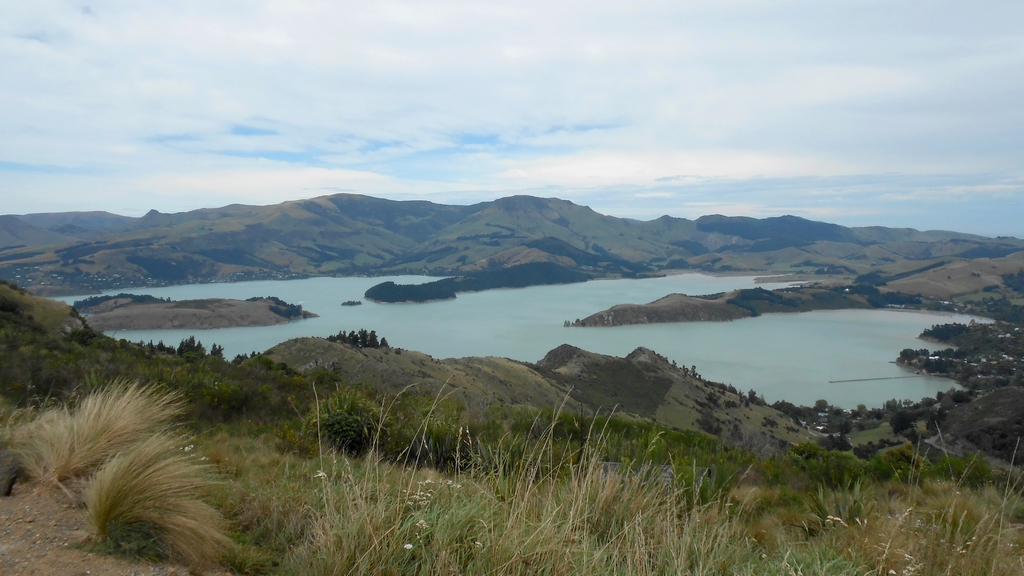 entre akaroa et christchurch