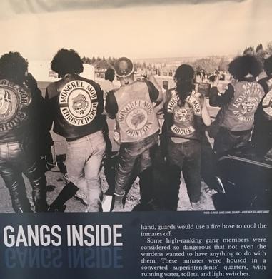 Gang de Motard en Nouvelle-Zélande
