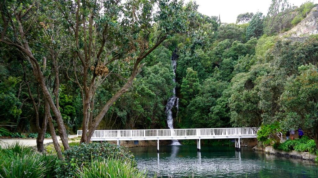 centennial garden Napier1