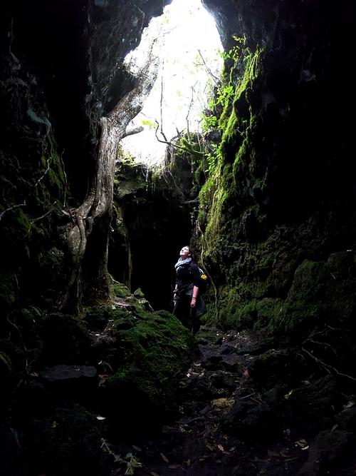rangitoto cave