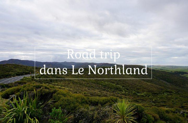 road trip dans le northland